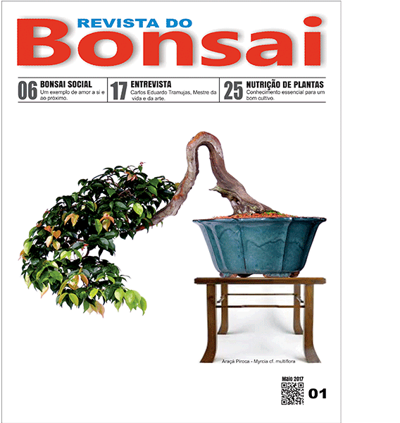 Capa-revista-bonsai01