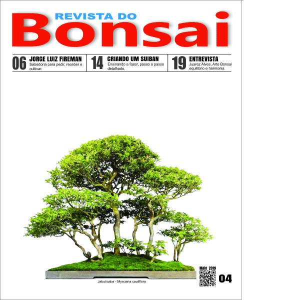 Capa-revista-bonsai04