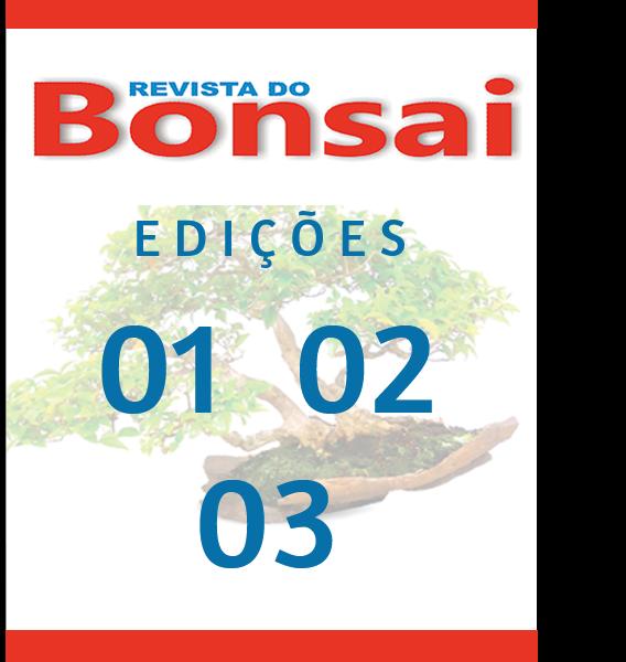 bonsai-01a03