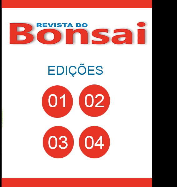 bonsai-01a04